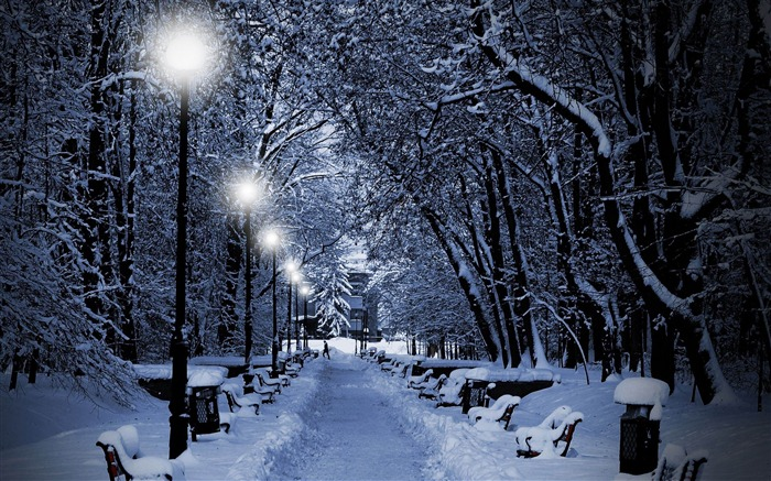 snowy park at night-winter natural landscape wallpaper Views:30232