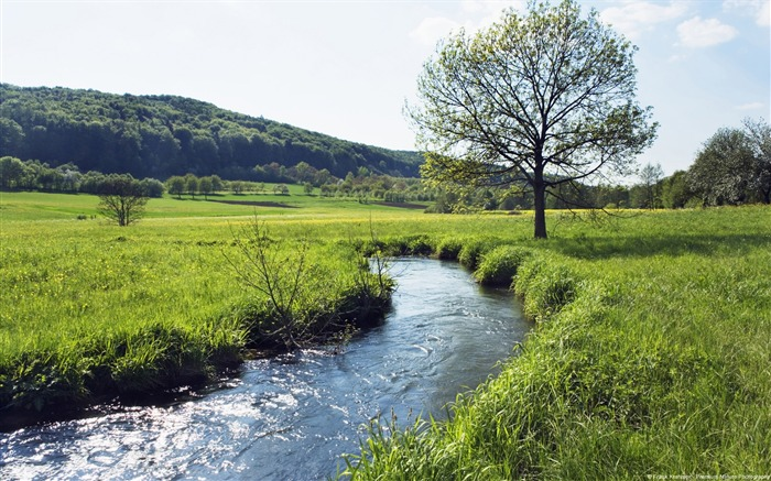 Bavarian creek Germany-natural landscape HD wallpaper Views:4893