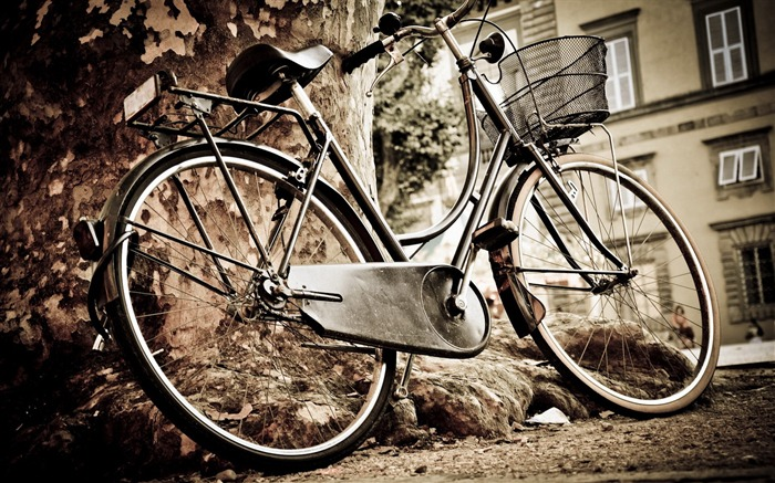 Bicycle theme photography widescreen wallpaper 04 Views:9004