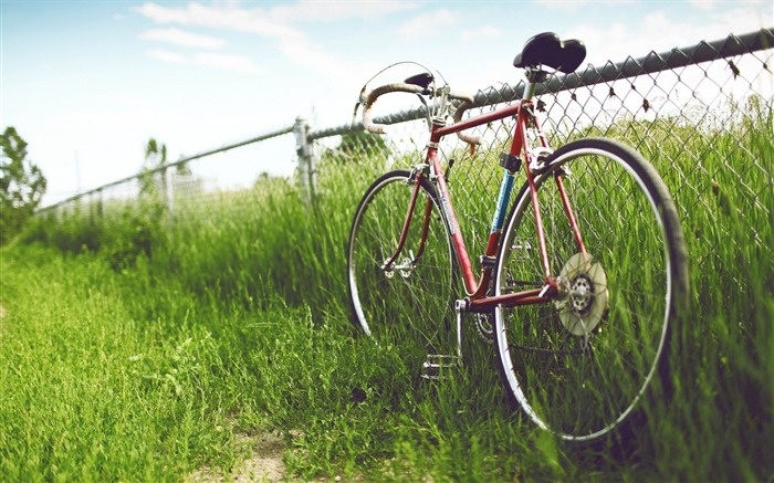 Bicycle theme photography widescreen wallpaper 08 Views:4446
