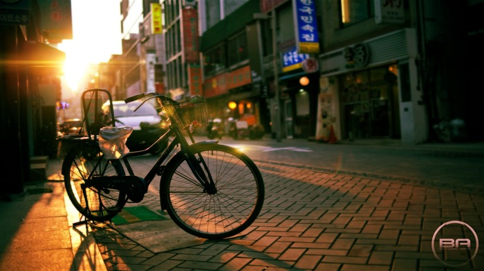 Bicycle theme photography widescreen wallpaper 15 Views:4201