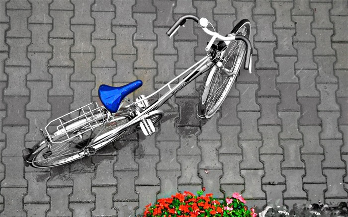 Bicycle theme photography widescreen wallpaper 16 Views:2756