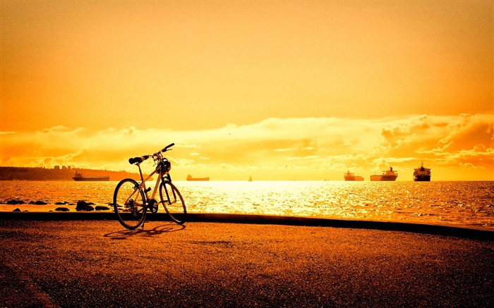 Bicycle theme photography widescreen wallpaper 18 Views:3599