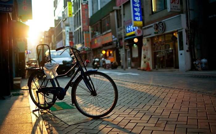 Bicycle theme photography widescreen wallpaper 19 Views:2418