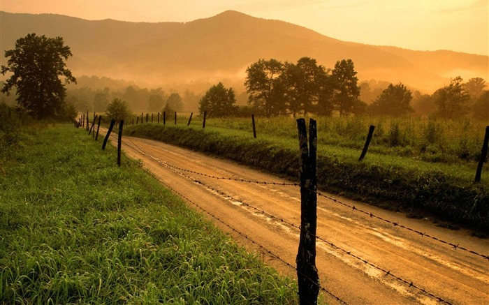country road-natural scenery widescreen wallpaper Views:10490