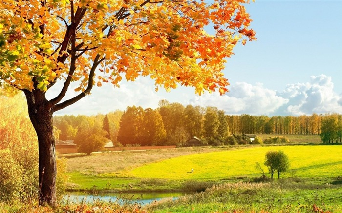 countryside-natural scenery widescreen wallpaper Views:4958