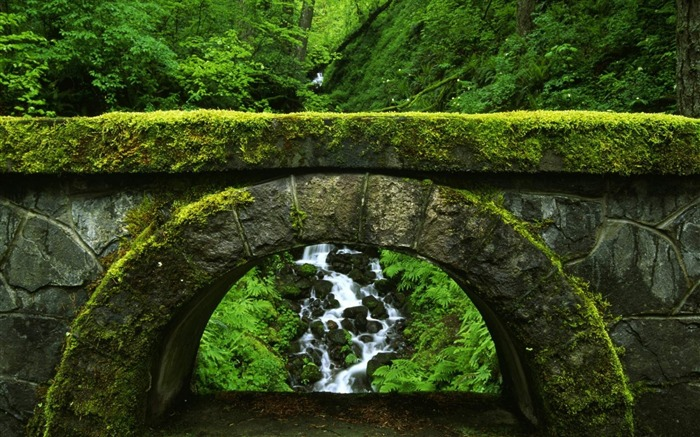 old green bridge-Natural scenery HD Wallpaper Views:9391