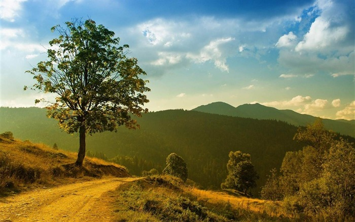 over the hills-natural scenery widescreen wallpaper Views:6645