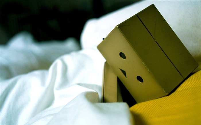 bed sadness-Danboard boxes robot photo HD Wallpaper Views:13356