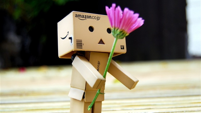 flower romance gift-Danboard boxes robot photo HD Wallpaper Views:6881