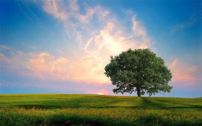 Without exception natural scenery HD Wallpapers Views:16330