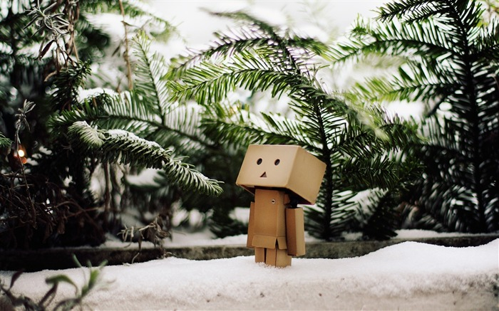 mood snow mud waiting-Danboard boxes robot photo HD Wallpaper Views:6835