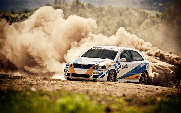 opel race dust trees grass-Sports theme wallpapers Views:2749