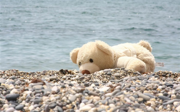 soft toy bear beach rocks sea-quality Desktop HD wallpaper Views:3395