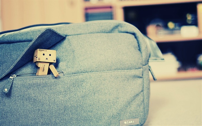 toy bag pouch-Danboard boxes robot photo HD Wallpaper Views:8902