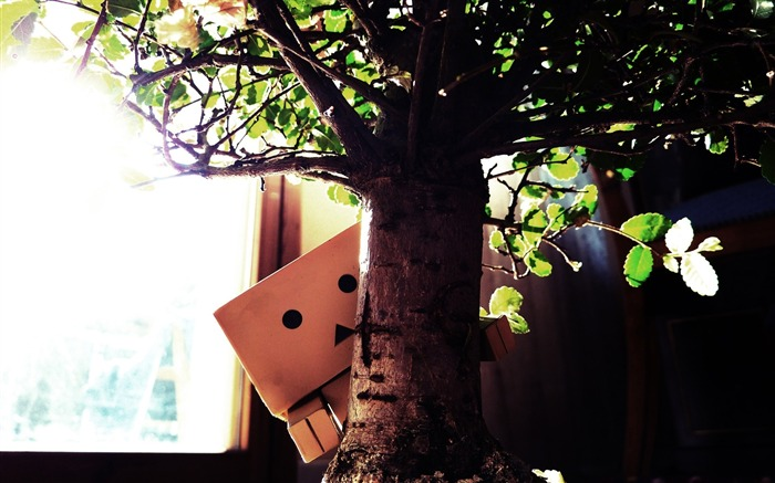 tree toy-Danboard boxes robot photo HD Wallpaper Views:6143