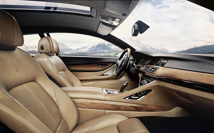 2013 BMW Pininfarina Gran Lusso Coupe Auto HD Wallpaper 16 Views:2271