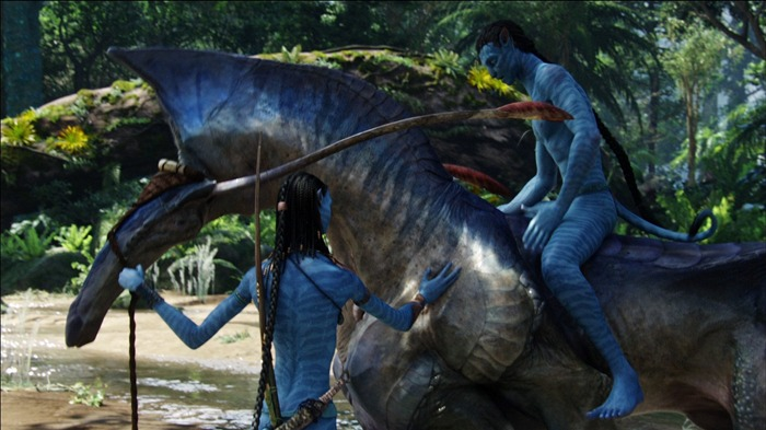 2014 Avatar 2 Movie HD Desktop Wallpaper 09 Views:14888