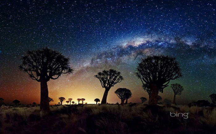 African grasslands night sky-May 2013 Bing wallpaper Views:11205