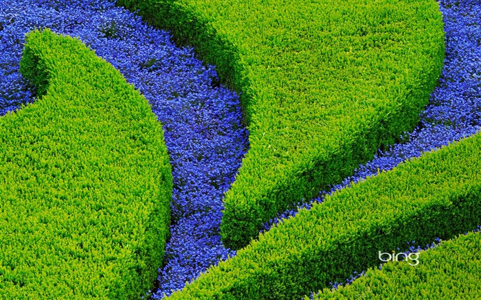 Landscaping-May 2013 Bing wallpaper Views:4398