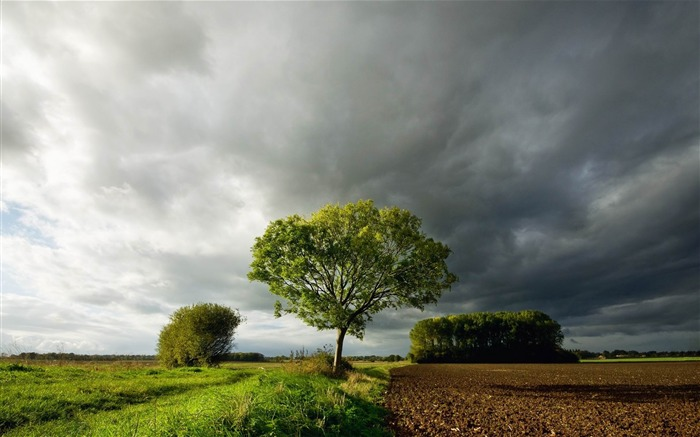 countryside land-Landscape widescreen wallpaper Views:4361