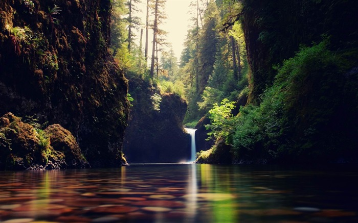 forest cascade-Summer scenery wallpaper Views:4224