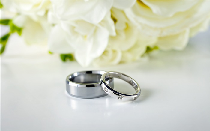 Couple rings-the witness of love HD desktop wallpaper Views:9351