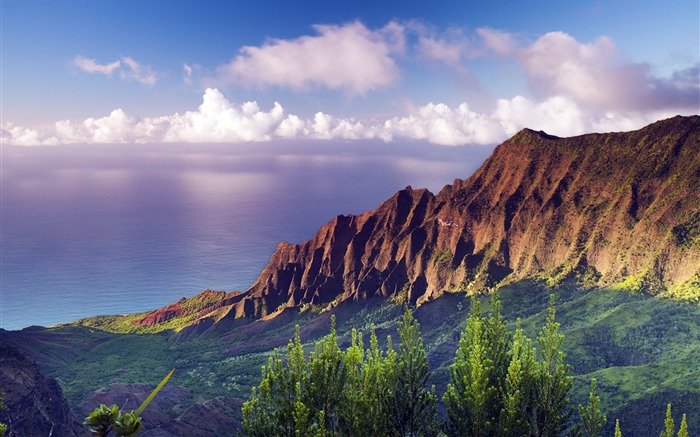 Beautiful Hawaiian Islands landscape HD Wallpaper Views:14528