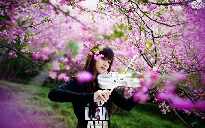 The beauty of the violin-oriental beauty girl HD photo wallpaper Views:4740