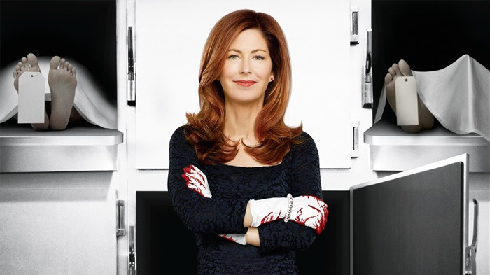 Body of Proof TV Series HD wallpaper 05 Views:2583