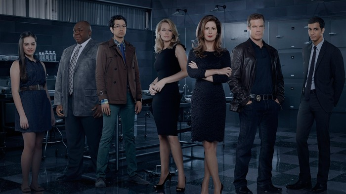 Body of Proof TV Series HD wallpaper 07 Views:2461