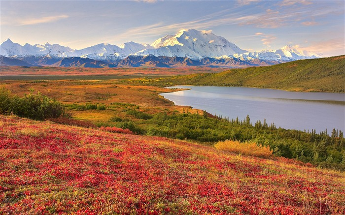 Title:Denali National Park Beautiful Landscape HD Wallpaper Views:4249