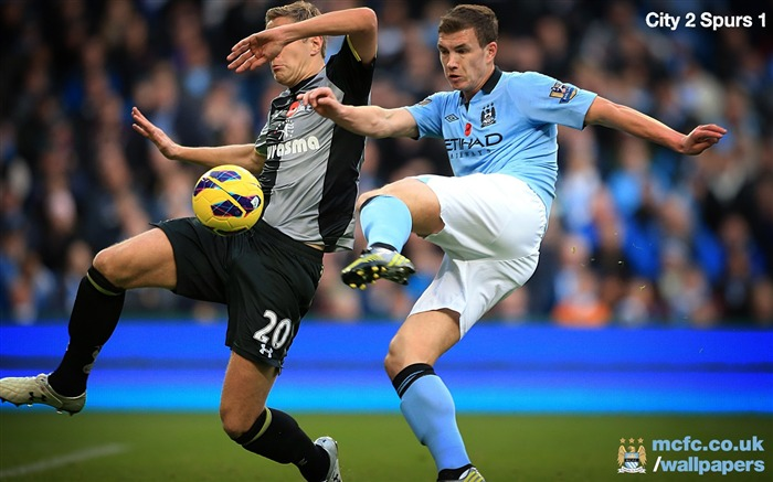 FA Premier League Manchester City 2012-13 season Wallpaper Views:6409