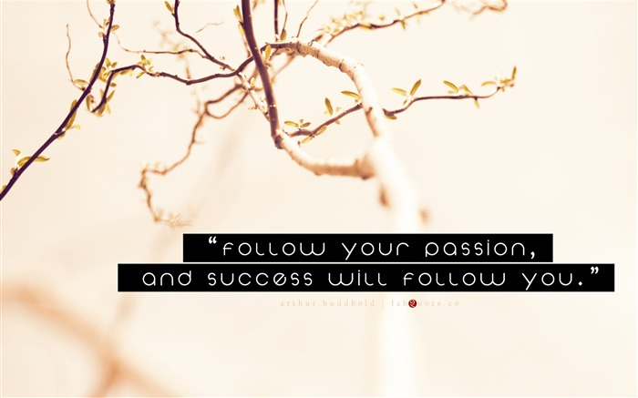 arthur buddhold success quote-Abstract design HD wallpaper Views:3354