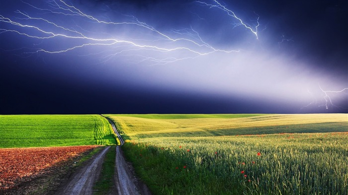 thunderstorm over the field-Beautiful scenery wallpaper Views:3711