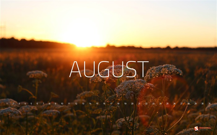 August 2013 calendar desktop themes wallpaper Views:13609
