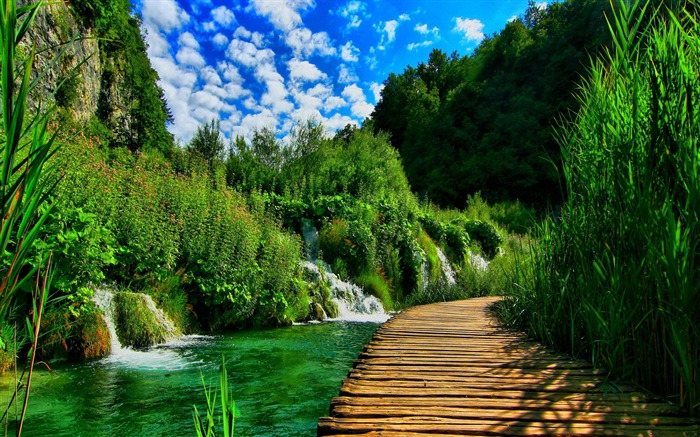 plitvice lakes national park-Best Scenery HD Wallpaper Views:3792