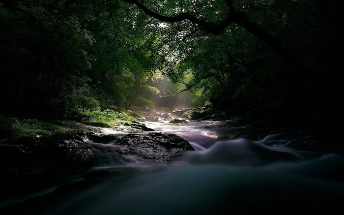 river stream current light uncertainty wood-landscape HD wallpaper Views:4096