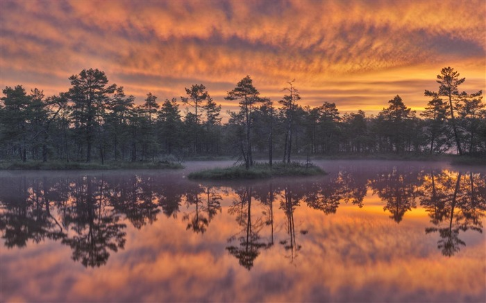 Sweden seasons natural beauty HD Wallpaper 10 Views:2826