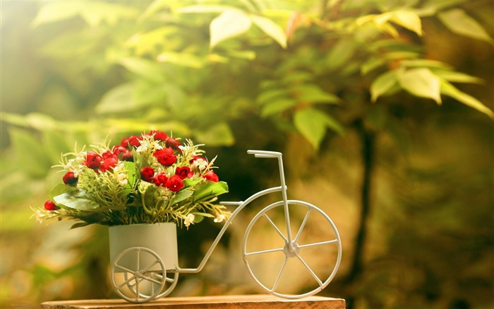 Flowers bike-Flowers HD Wallpaper Views:4235