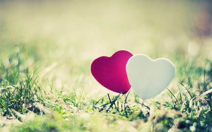 heart grass couple close-up-Romantic HD Wallpaper Views:10010