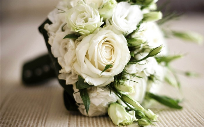 rose white flowers bouquet-Photo HD Wallpaper Views:3626