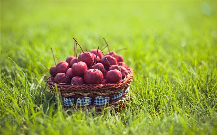 fruit grass ranetki basket-Food HD Wallpaper Views:3547