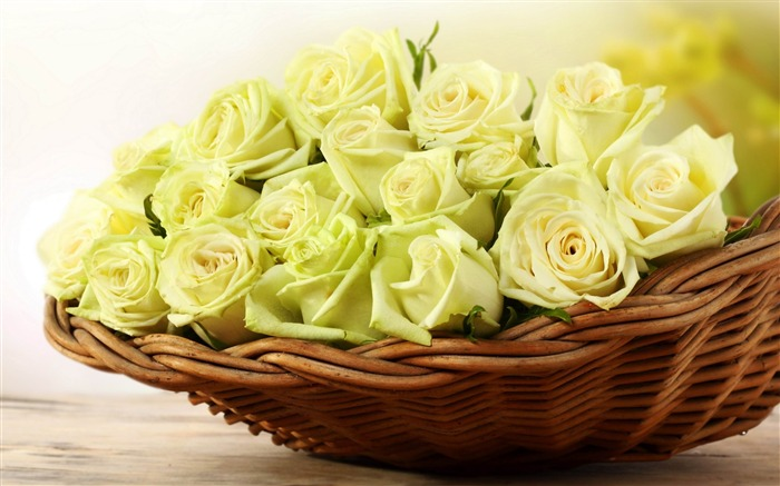 roses yellow basket-Photos HD Wallpaper Views:2922