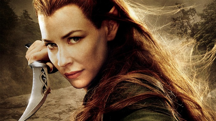The Hobbit 2-The Desolation of Smaug Movie HD Wallpaper 14 Views:7085