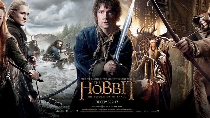 The Hobbit 2-The Desolation of Smaug Movie HD Wallpaper Views:16211