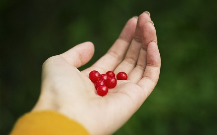 hand berries red girl-HIGH Quality Wallpaper Views:2508