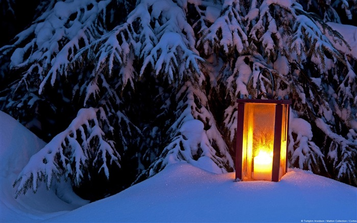 Snow Lantern-Windows HD Wallpaper Views:2244