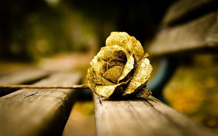 flower gold rose-High quality wallpaper Views:3792