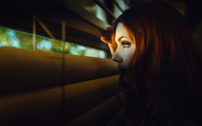 redhead girl look blinds-High quality wallpaper Views:2088